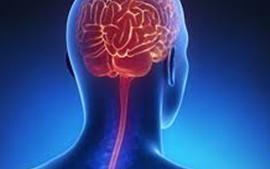 اضطرابات الأعصاب العلاج في ولاية كيرلا
